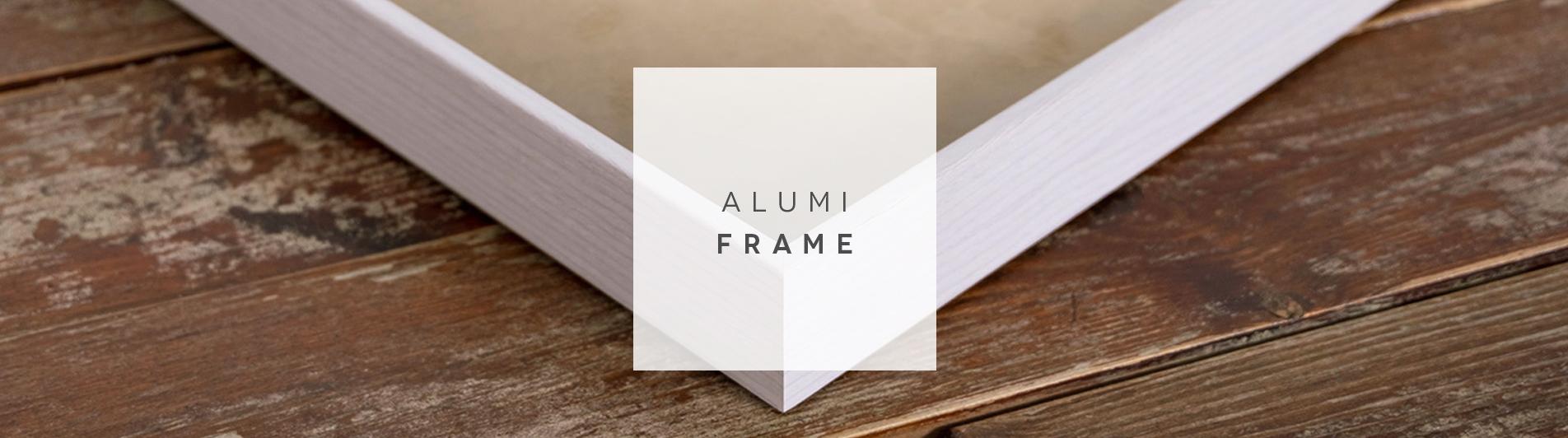 Alumi Frame