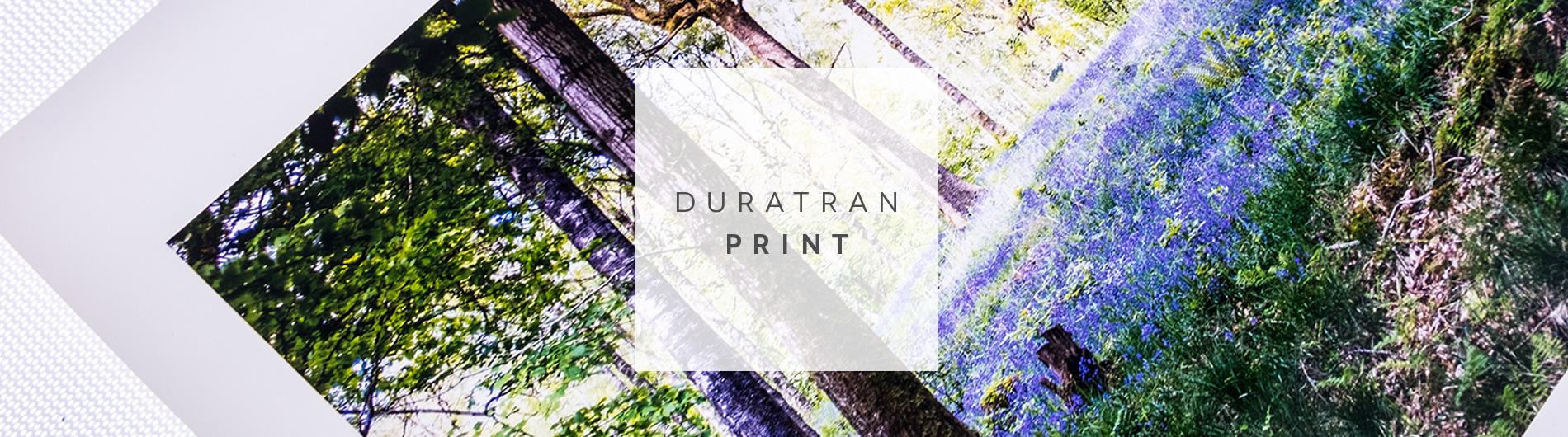 Large Format Duratrans