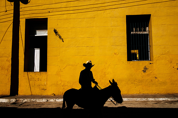 Cuban man on horse