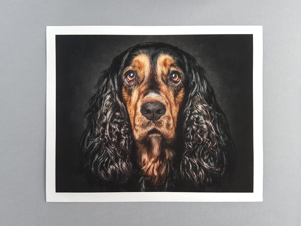 stunning Giclee German Etch print
