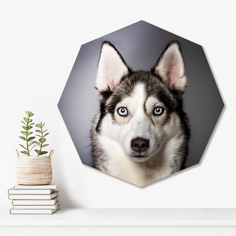 Acrylic Octagon Shape Photographic Prints