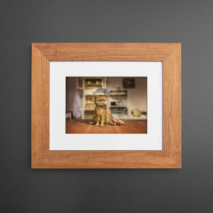 framed-print_tribeca Frame_picture frames_custom picture frames_digitalab_Oak photo frame