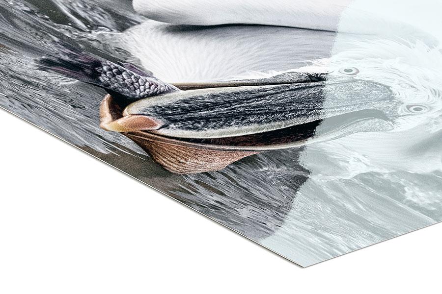 Metallic Pearl Print