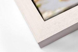 Impact Canvas Tray Frame - Whitewash
