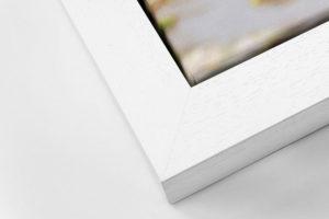 Impact Canvas Tray Frame - White